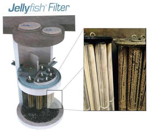 Jellyfish filter used in water treatment, showing condition of new and needing-replacement filter